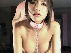 Ladyboy Schoolgirl Fucked Seem like Resembling