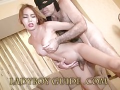 Crazy Precarious Ladyboy Honour To..
