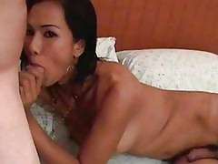 Ladyboy strips nigh with the addition..